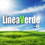 """Le arance di Ribera protagoniste della trasmissione """"Linea Verde"""" di Rai Uno"""