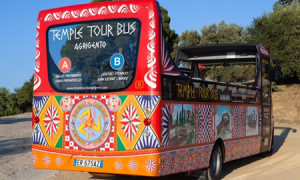 bus_valle
