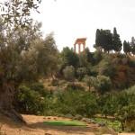 Agrigento, la Chiesa di San Pietro e il Giardino della Kolymbethra: un Progetto per fare rete