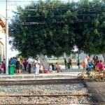 Treni di Akragas sulla ferrovia dei templi: appuntamento il 16 agosto
