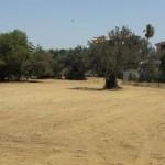 Agrigento, parcheggi alla Valle: danno erariale
