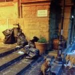"""Raccolta differenziata delle utenze commerciali in via Atenea. Precisazione delle ditte: """"Servizio in ritardo di 45 minuti per un contrattempo tecnico con i mezzi di trasporto"""""""