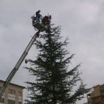 Agrigento, si addobba l'Albero di Natale