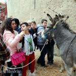 """Agrigento, al via il """"Presepe vivente di Montaperto"""": si parte con il """"Presepe delle scuole"""""""