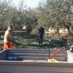 Agrigento, l'Olio biologico del Giardino Botanico donato alla Mensa della Solidarietà