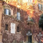 Comune di Agrigento, Firetto assegna le deleghe agli assessori
