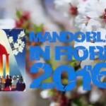 Sagra del Mandorlo in Fiore: da giovedì al via il Festival Internazionale dei Bambini del Mondo – IL PROGRAMMA