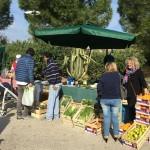 Agrigento, riaprono i mercatini settimanali per il settore alimentare