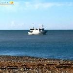 Pesca illegale di novellame vicino il fiume Platani: la denuncia di MareAmico – VIDEO