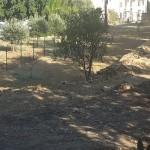 Agrigento, vendita di un terreno di interesse archeologico: scatta arresto, tre gli indagati