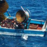 """Area Marina Protetta Isole Pelagie: rimozione """"rete fantasma"""" e tutela dei fondali"""
