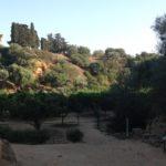 Agrigento, stasera al Giardino della Kolymbethra la grande musica del Cinema