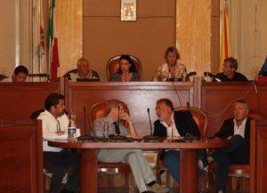 consiglio comunale relazione annuale 1