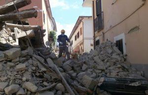 terremoto cane 1