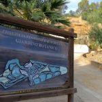 Attività di volontariato per soggetti ammessi ai lavori di pubblica utilità nel Giardino Botanico dell'Ente