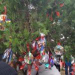 """Agrigento, alberi di Natale di Villa Bonfiglio addobbati anche dagli alunni dell'Istituto comprensivo statale """"Agrigento Centro"""""""