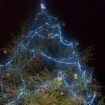 Agrigento, nuova illuminazione per l'Albero di Natale di piazza Stazione – FOTO