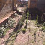 """Porto Empedocle, pessime condizioni igieniche al Palazzetto """"Hamel"""" e della via Vespucci"""