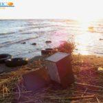 """Piena del fiume Akragas, MareAmico: """"una mucca in stato di decomposizione"""" – VIDEO"""