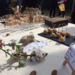 Agrigento, si parte con il primo evento del Mandorlara 2018