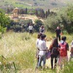 Pasquetta alla Valle dei Templi e al Giardino della Kolymbethra