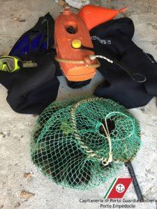 pesca-ricci