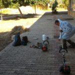 Agrigento, al via la manutenzione degli edifici scolastici comunali: decoro e sicurezza per gli asili e le scuole di Villaseta e del Villaggio Mosè – FOTO