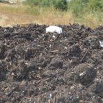"""Impianto di compostaggio di Joppolo Giancaxio, Legambiente: """"qualcuno sta giocando sporco"""""""