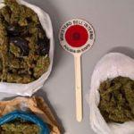 Licata, oltre 1 chilo di marijuana in un ovile: arrestato pastore