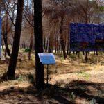 Concorso Marine Litter Art: vincono le rappresentazioni del pensiero filosofico di Empedocle e le immagini oniriche di un bosco incantato