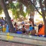 """Boschetto delle Dune a San Leone, Mareamico: """"demanio sotto assedio"""""""