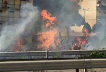 Incendi nell'empedoclino: Di Emanuele (Pd) ringrazia le Forze dell'Ordine