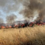 Incendio ad Agrigento, fiamme lambiscono abitazioni nei pressi del tribunale