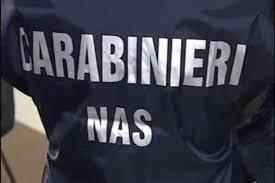 carabinieri-nas1