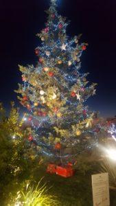 albero-natale1