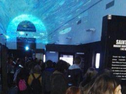 Van Gogh Multimedia Experience nel Complesso Monumentale Guglielmo II di Monreale