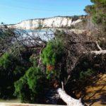 Eraclea Minoa, al via il progetto contro l'erosione costiera