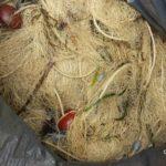 Pescatori di frodo a Porto Empedocle: sequestrate quattro reti