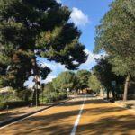 Agrigento, Passeggiata Archeologica: incontro tra Comune, Anas e Parco