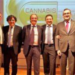 Salute, uso terapeutico della Cannabis medica: Armao da Agrigento annuncia un tavolo tecnico-scientifico in Sicilia