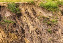 Erosione dei terreni e la nuova frontiera dell'ingegneria naturalistica: ecco le geostuoie