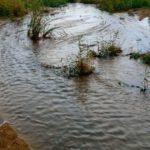 """Agrigento, Mareamico: """"appena piove la fogna finisce in mare"""" – VIDEO"""