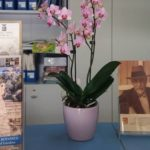 Customer satisfaction: turisti francesi regalano orchidea all'URP del Libero Consorzio di Agrigento