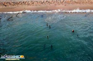 ferri-spiaggia1