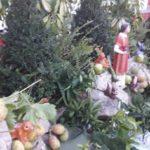 Estate a Montaperto, si festeggia San Lorenzo con torta artistica e musica