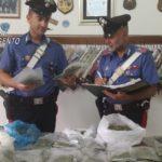 Blitz all'interno di un'abitazione a Canicattì: sequestrati oltre due chili e mezzo di Marijuana