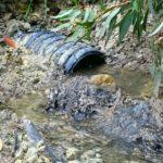 """Mareamico: """"ad Agrigento inquina pure chi è pagato per depurare"""" – VIDEO"""