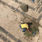 Agrigento, discesa San Francesco di Paola: bambini costretti a scavalcare le sterpaglie