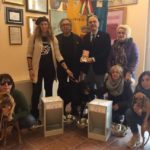 Randagismo, anche d'inverno i cani di Lampedusa non sono soli