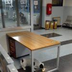 Al pronto soccorso con i cani: l'indignazione di una paziente dell'Ospedale di Agrigento